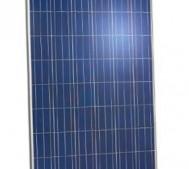 poly panel jinko solar